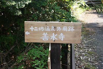 ゆらら_山側の道_5724.JPG