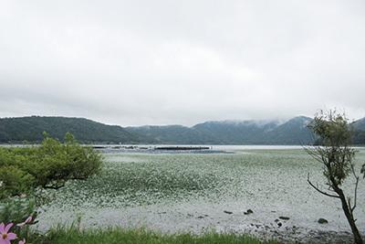 ウッディパル2_3696_余呉湖.JPG