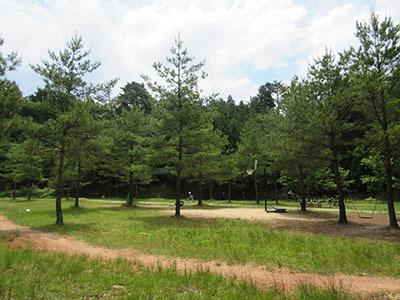 グリム冒険の森_MTB1498.JPG