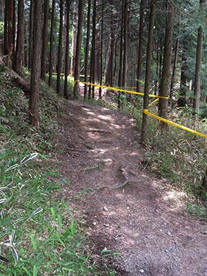 グリム冒険の森_MTB1501.jpg