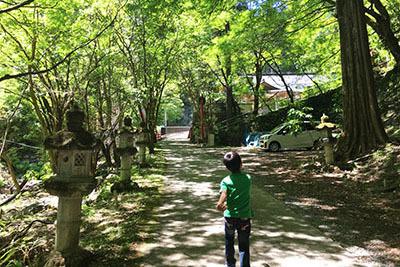 モンキーパーク_7108_木陰道.JPG