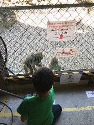 モンキーパーク_7126_エサやり.JPG