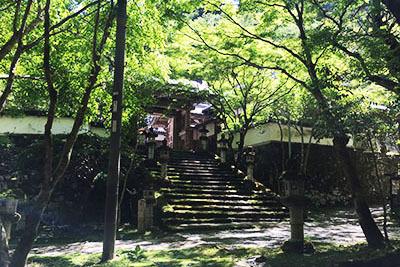 モンキーパーク_7146_瑠璃寺.JPG