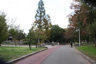 久宝寺緑地_BBQ広場_4016.JPG