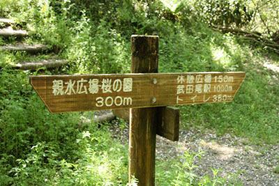 廃線ウォーク_0998.JPG