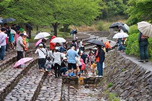 日時計の丘公園_3日目_イベント魚.JPG