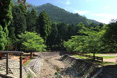 森のひととき3_川_5756.JPG