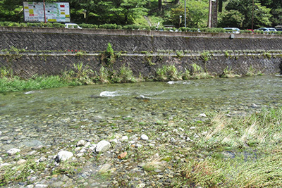 洞川温泉_4658_川の水.JPG