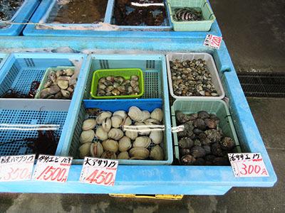 相生_魚稚とれとれ市場_1589.JPG