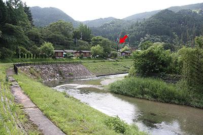 細野渓流2_電光掲示_サイトから_6347.JPG