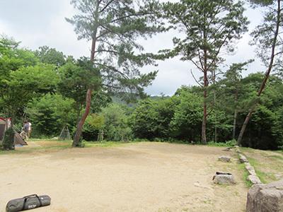 自然の森_オートサイト_1793.JPG