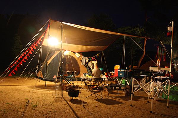 自然の森_夜のサイト_1868.JPG