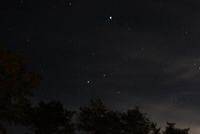 自然の森_星空_1914.JPG