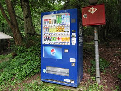 自然の森_樹間_販売機_1823.JPG