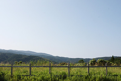 高知_庭からの景色_2471.JPG