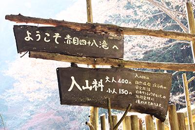 IMG_8881_入山料.JPG