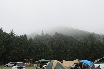 森のひととき2_朝3023.JPG