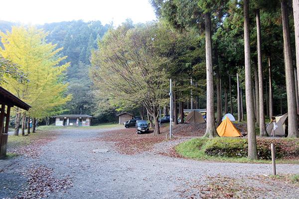 美山2_3898_朝のキャンプ場_600.JPG